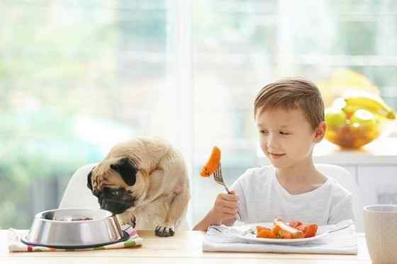 raça de cachorro para criança